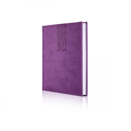 2022 Tucson Diary (White Pages)