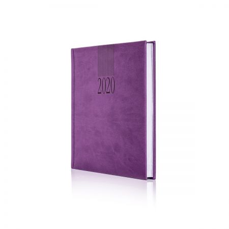 2020 Tucson Diary (White Pages)