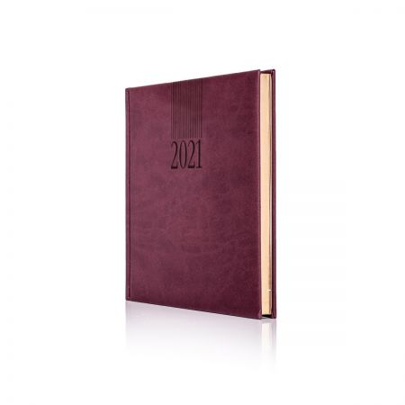 2021 Tucson Diary (Cream Pages)